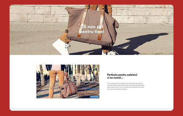 realizare magazin online shop idea